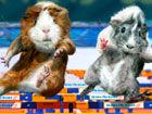 视频-英国发行萌系豚鼠游戏金牌日历