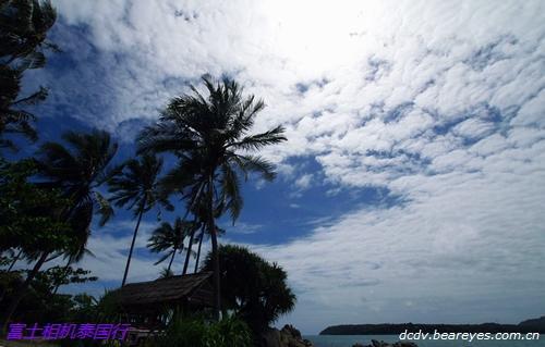 阳光,沙滩和热带鱼 泰国普吉岛游记