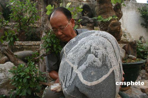 中国极品奇石 - 大漠孤烟 - 李安祥的博客