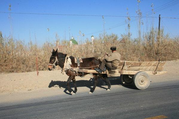 科技时代_图文:赶着马车的行路人