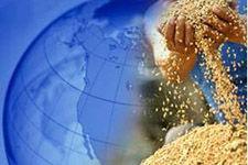 从数字看粮食:全球供应能满足人类胃口吗