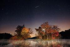 猎户座流星雨22日极大:天黑后3小时即可观测