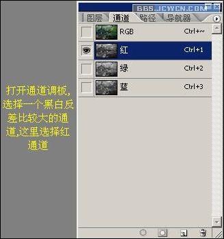 三、回到rgb混合通道,按住ctrl键点击红通道索览图,加载选区   四、按ctrl+j键建立通过拷贝的图层,把刚才选区中的内容复制成图层1,如图   第3页photoshop入门实例:制作林中阳光效果   第2页photoshop入门实例:制作林中阳光效