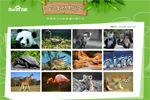 百度动物园正式上线:直播象龟交欢引热议