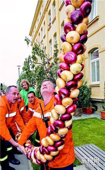 德国展出世界上最长洋葱辫(组图)
