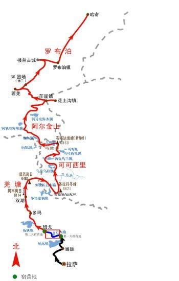 10月15日领队日记:暂别了,大树(组图)