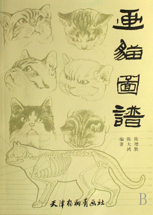 八,爪部特征 九,尾部特征 十,背部花纹特征 十一,动态特征 猫步骤详解