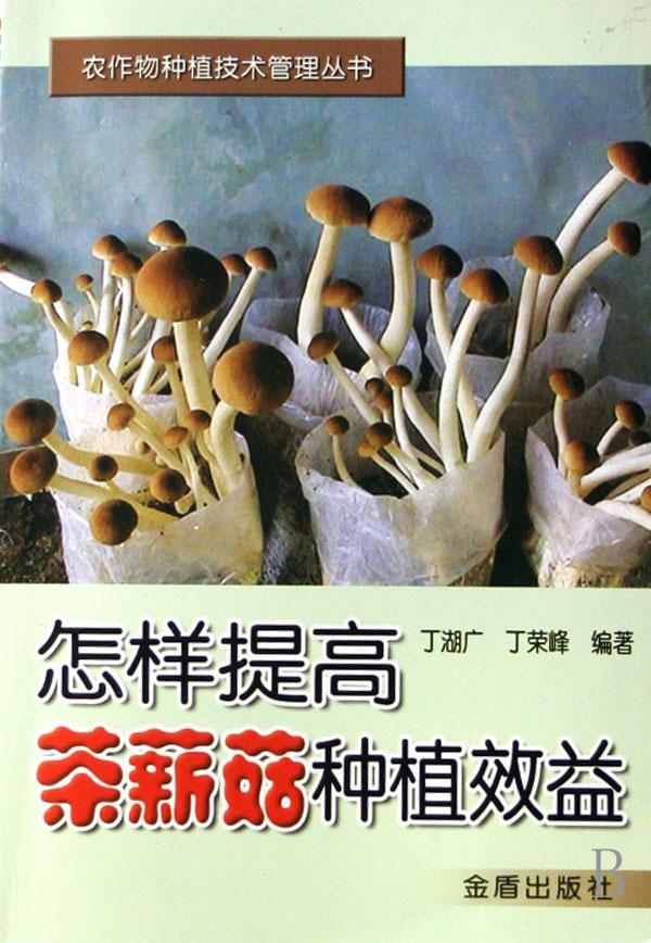 怎样提高茶薪菇种植效益/农作物种植技术管理丛书