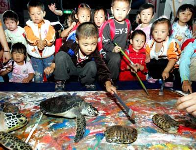 征集有关海洋生物及海洋环保为主题的绘画作品,大赛于10月31日截止图片