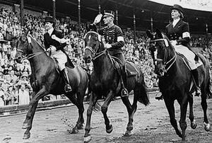 第3站:马背上的墨尔本