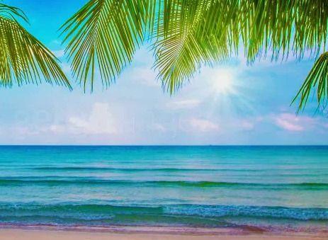 软件标签:美丽海滩动态屏保海滩屏幕保护 运行环境:winxp, win7, win8