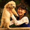 第292期:爱狗有理VS吃狗无罪