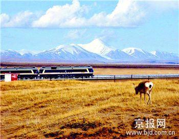 根据青藏铁路环保验收调查等资料表明,野生动物通道的使用效率明显