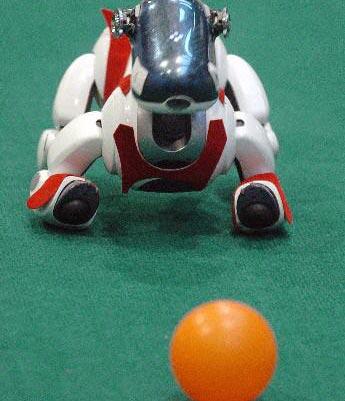 2007中国机器人大赛在济南举行
