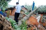 江西强降雨致30人死亡 其中26人因雷击死亡