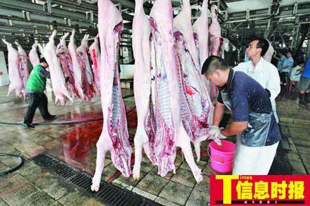 广州猪贩自曝两月赚钱超过去年半年总和(组图)