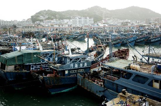图文:渔船在福建东山县大澳渔港避风