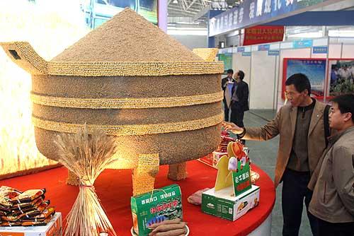 2011年陕西杨凌农高会---第18届中国杨凌农业高新科技成果博览会