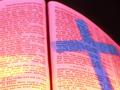 依照圣经指导原则生活的一年