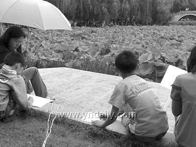 227名儿童大观公园画荷花