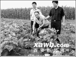 劝阻无果男子杀死卖淫妻(图)_新闻中心_新浪网