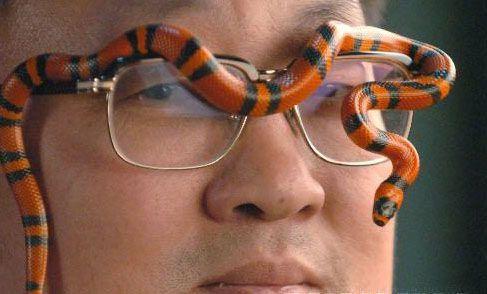 图文:另类宠物眼镜上的小蛇