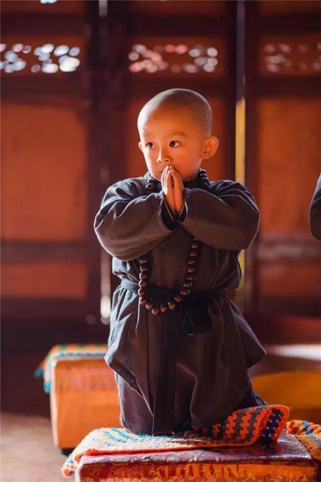 西来寺的小修行者