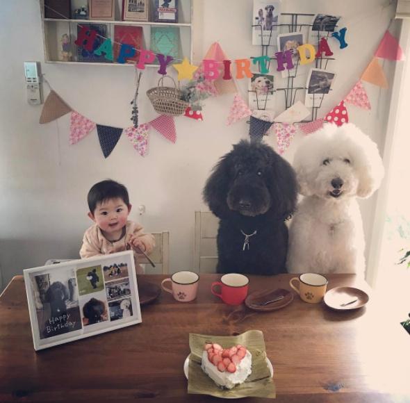日本萌娃与狗狗暖照走红