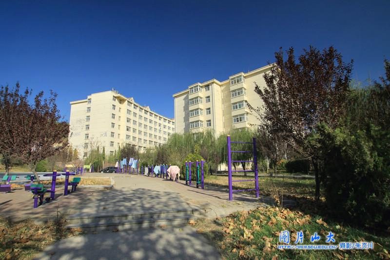 山东大学校园风光 软件园校区图片