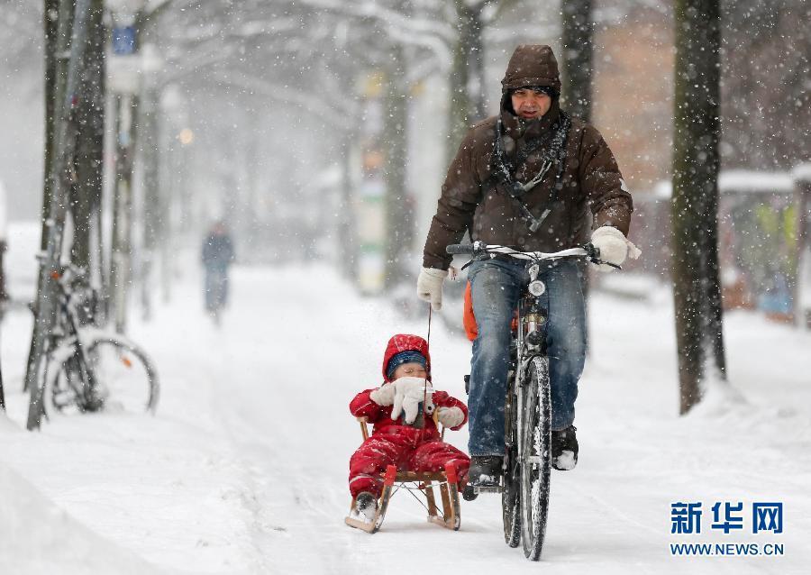 柏林,一名父亲骑着自行车,拉着坐在雪橇上的孩子前行.来源:新图片