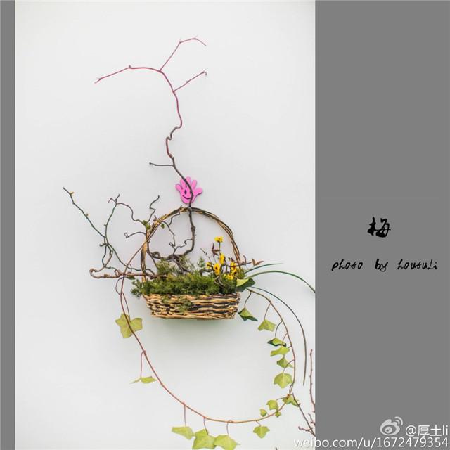 芥子园石头画法视频展示