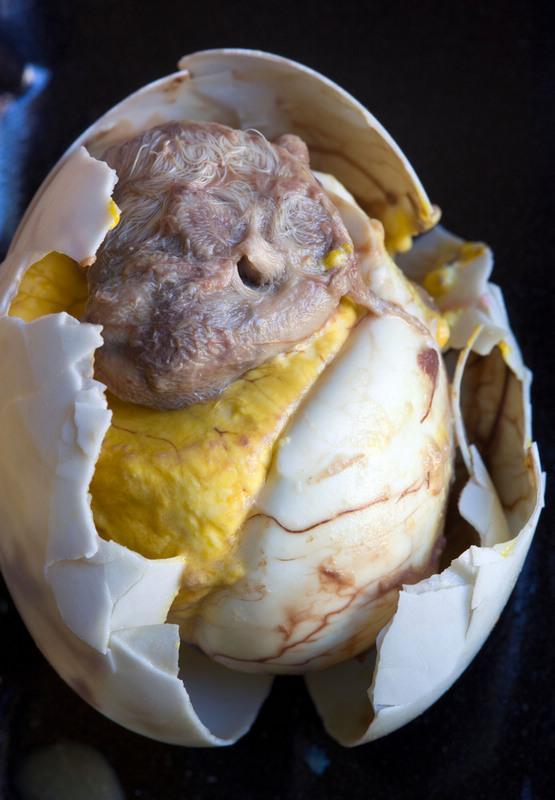 世界上最恶心的食物_看吐了 这可能是世界上最恶心的食物,瑞典人每年