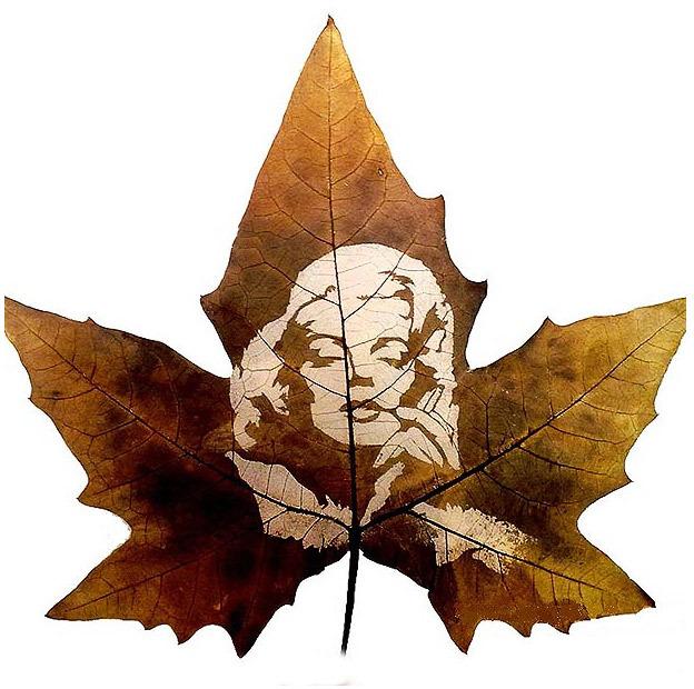 叶子剪纸图案大全