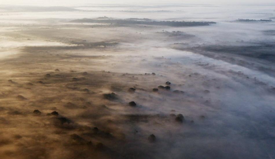 亚马逊雨林每分钟消失6个足球场面积