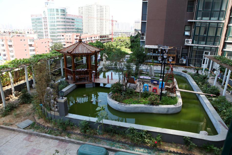"""住宅之间的裙楼楼顶上建花园,还造了水系养鱼,""""水系至少50吨"""