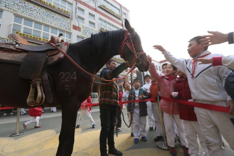 2011中超积分榜-东北华北-吉林省-长春体育游戏app下载官网