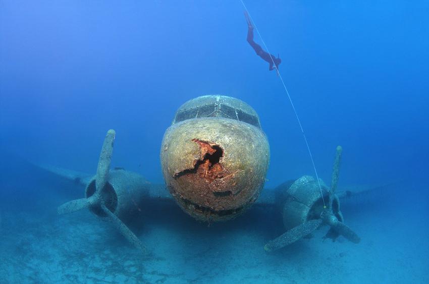 """如今安静地在海床上""""执行任务"""",俨然已经成为了海洋生物和潜水爱好者"""