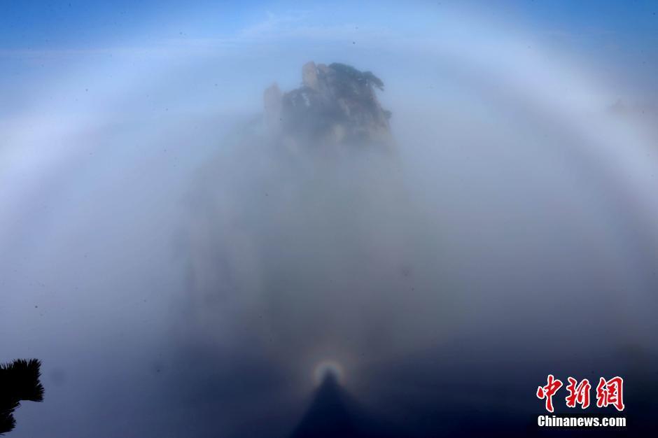"""11月1日,安徽黄山风景区雨过天晴,出现""""佛光""""景观."""