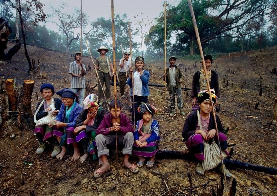 续着祖上的刀耕火种、毁林开荒的原始耕作方式,日出而作、日落