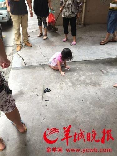 2岁女童从5楼坠下砸中汽车后站起大哭_高清图集_新浪网2010水產年會