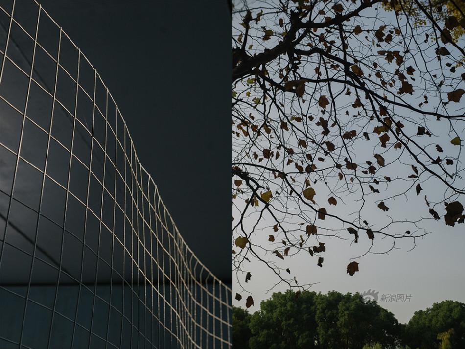 富晟联盟(渑池)信息咨询有限公司