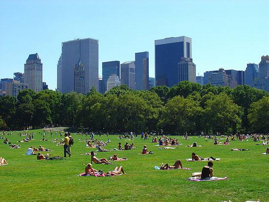 纽约,美国面积最大且人口最多的城市,因其日夜不断的喧嚣氛围享有