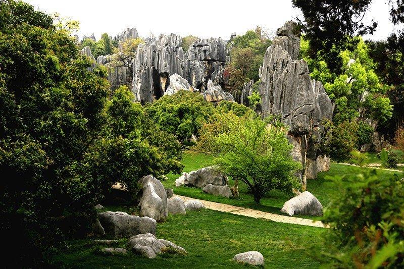 昆明石林又称为云南石林,以石多似林而闻名,景区范围广阔,景点