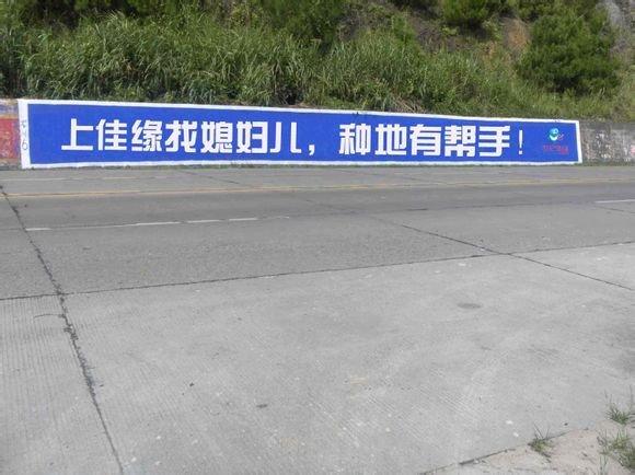 中国人口老龄化_中国农村人口占