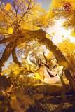 《剑网3》罗姆之舞高定国风礼服