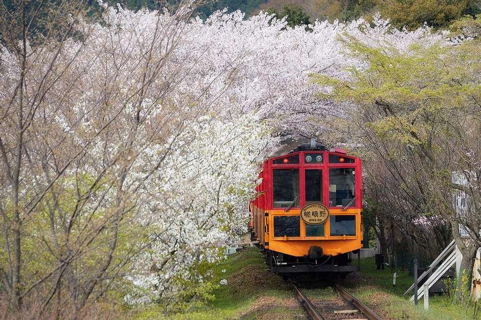 坐火车看风景