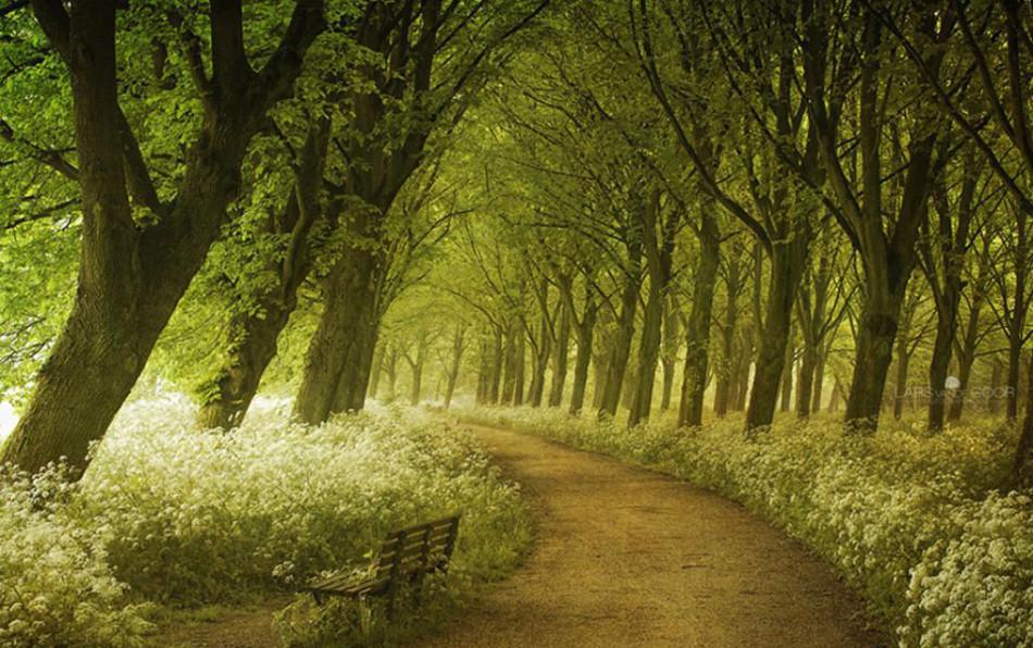 就想和你走到尽头 蜜月去最美的25条小路