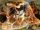 《无处安放的躯体》140x175cm 2014