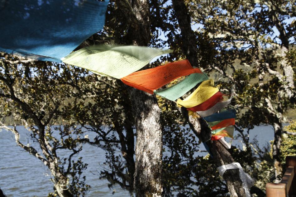 十月的普达措国家公园