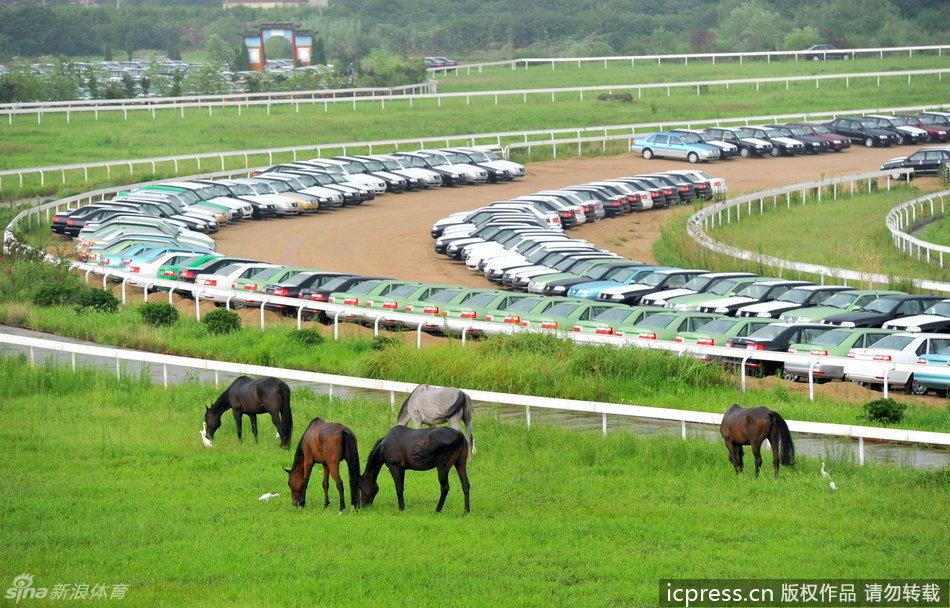 南京国际赛马场,安徽省巢湖市体育场内长满了杂草,2007年拆除的